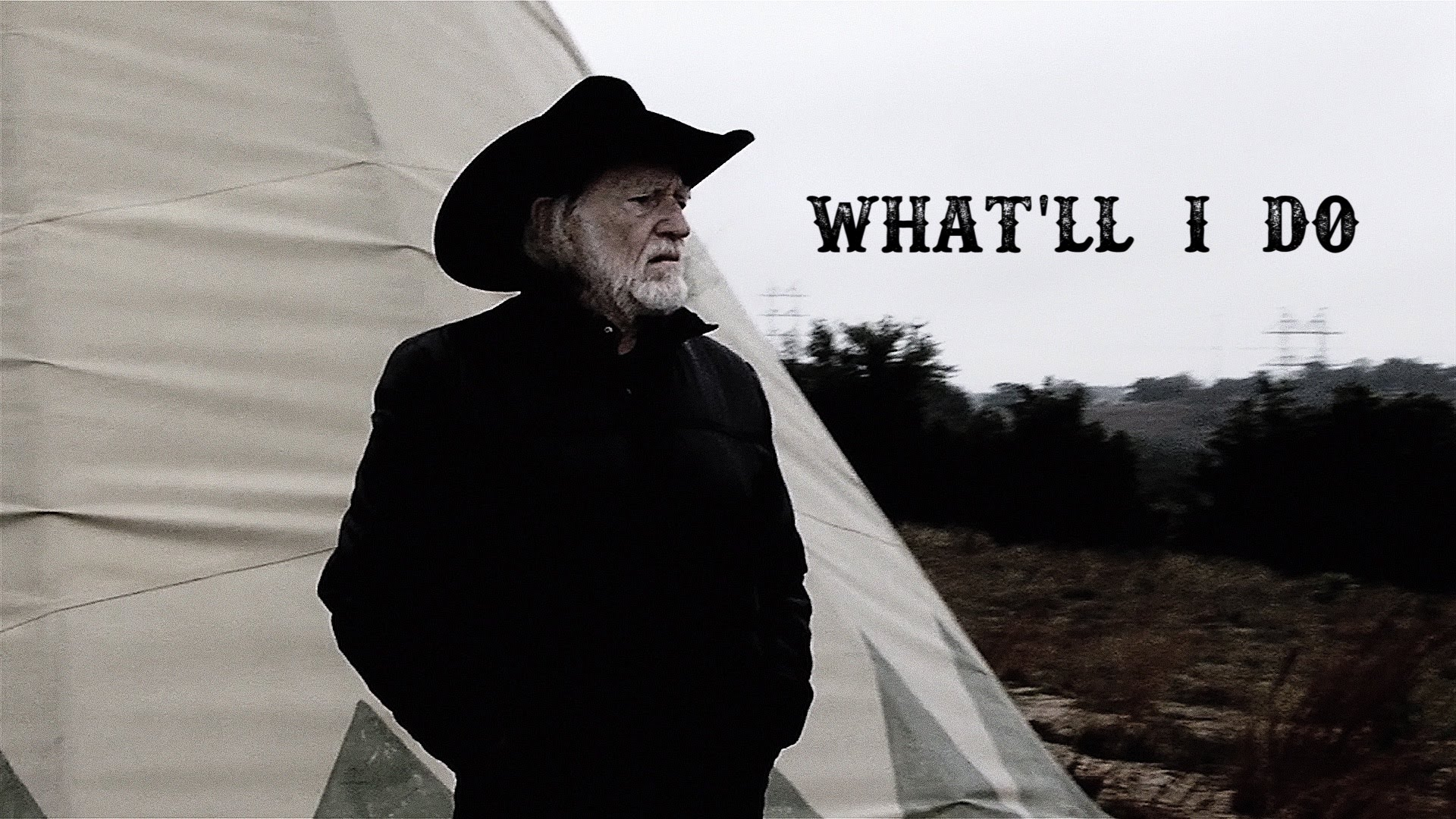 Willie Nelson What'll I Do